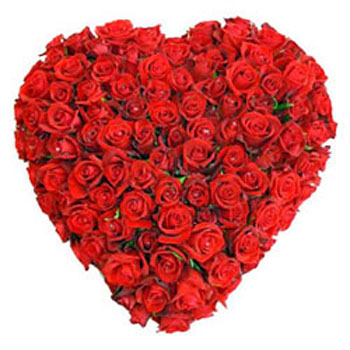 100 Red Roses as Heartshape