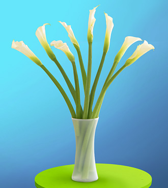 8 Cala Lillies with Vase